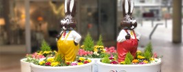 WEL_Ostern_Giveaway_Newsbanner_1200x512